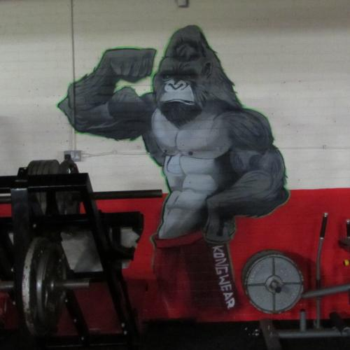 Herco's Gym - Doncaster
